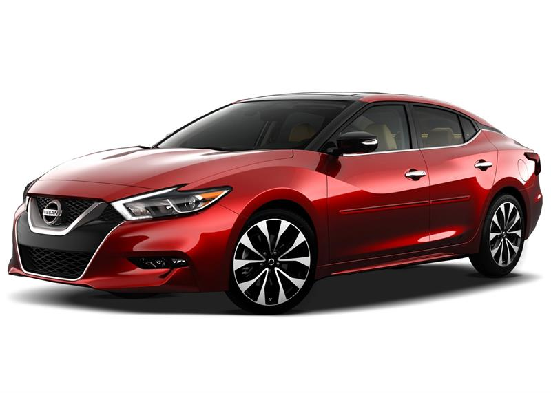 Color Insert Body Side Molding Fits 2016 2018 Nissan Maxima